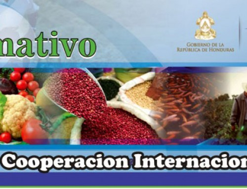 Boletín Informativo – Coorperacion Internacional